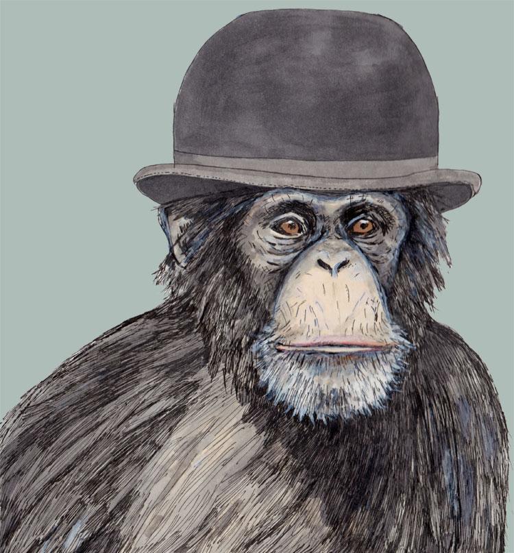 Monkeys......